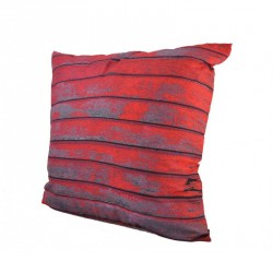 Red Boards Cushion